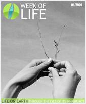 Porovnejte svůj život s ostatními obyvateli naší planety!