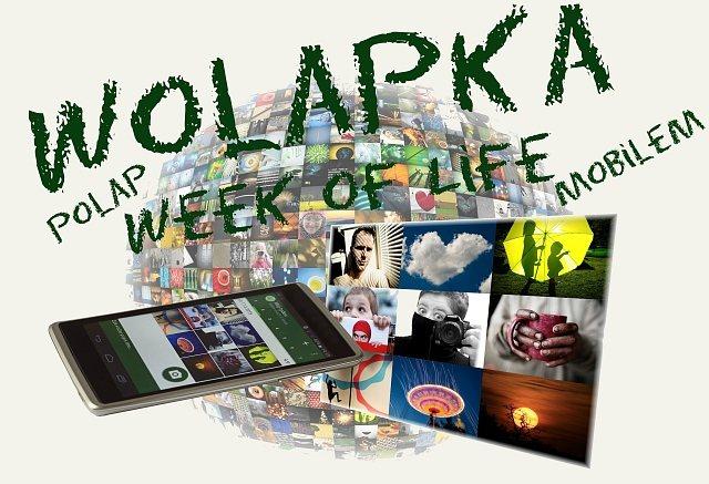 Wolapka